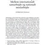 transnationalt_dansk_politi